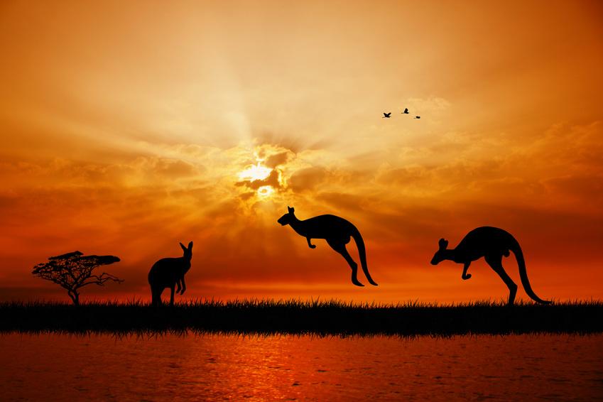 NUANCES AUSTRALIENNES - voyage  - sejour